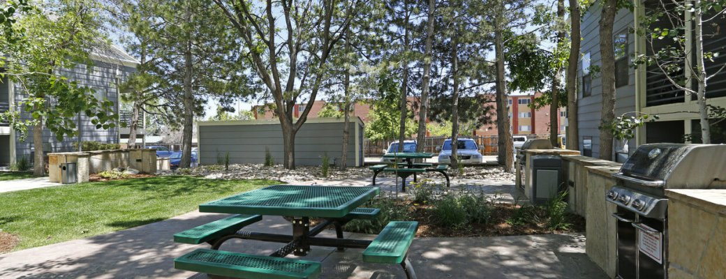 Picnic table area at Blue Sky Lofts Apartments